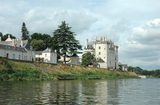 Candes-Saint-Martin, فرنسا: Château de Montsoreau à 600m du Gîte