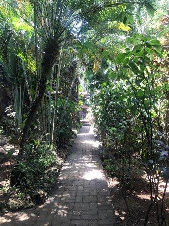 Mango Inn Resort: photo1.jpg