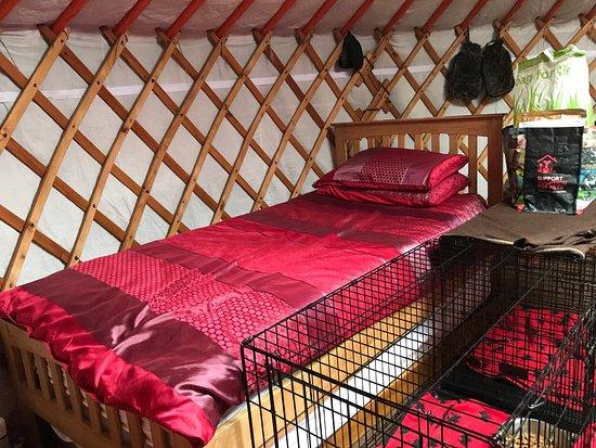 Bilde fra Swaledale Yurts