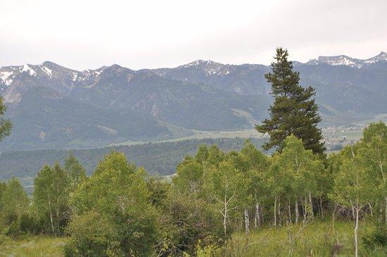 Rockin' M Ranch Image