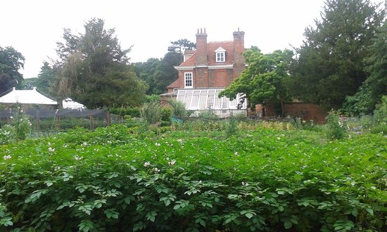Stowmarket, UK: The walled garden and house