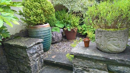 Wild Honey Inn : Garden Room Opens up into