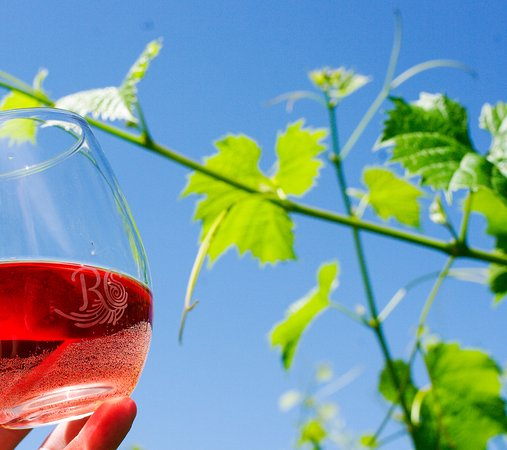 Cowichan Bay, Canada : Try our innovative wines such as Pinot Gris with color