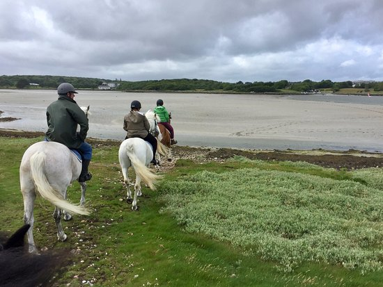 Moycullen Riding Centre : Beach Trek