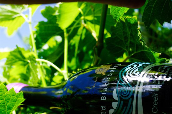 Rocky Creek Winery 사진
