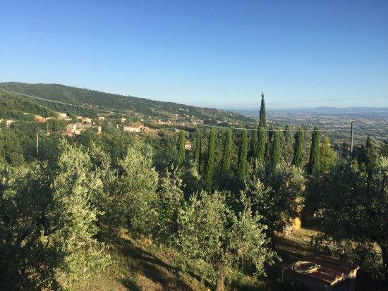 San Baronto, อิตาลี: La Casetta
