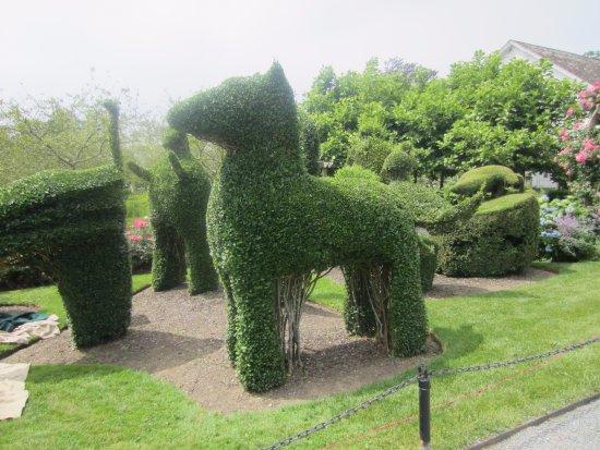 green animals topiary gardens - Green Animals Topiary Garden