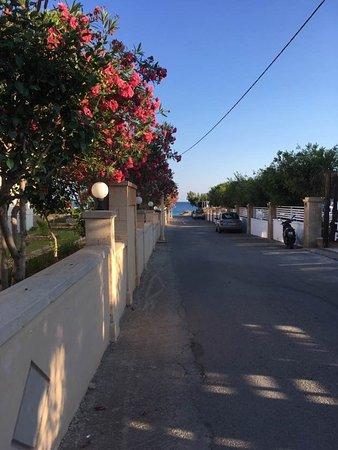 Elvita : Den lille vej ned forbi hotellet - ned til havet. Man parkere sin bil helt op mod muren til højr