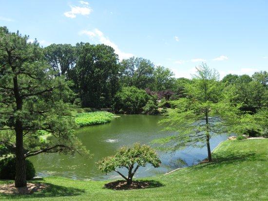 The Pool In Japanese Garden Picture Of Missouri Botanical Garden Saint Louis Tripadvisor