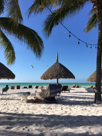Holbox Hotel Casa las Tortugas - Petit Beach Hotel & Spa: The view from the restaurant