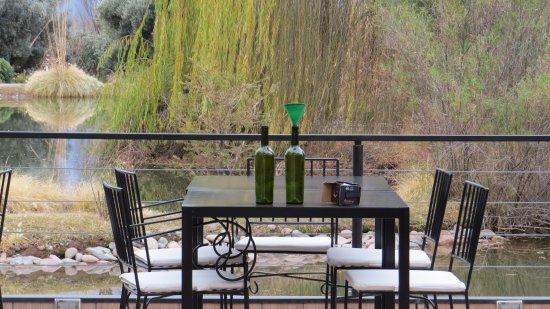 Bodega Renacer: Garrafas de nossos vinhos