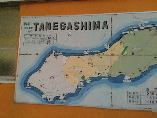 Tanegashima Φωτογραφία