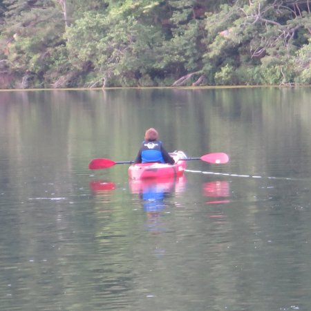 Lawrenceburg, TN: Perfect for kayaking. You can rent them too.