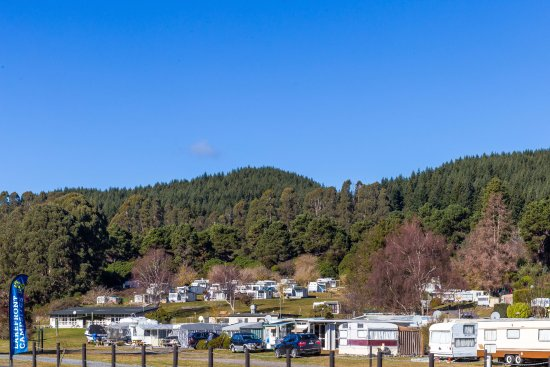 Motutere Bay Holiday Park : Hillside sites / road view