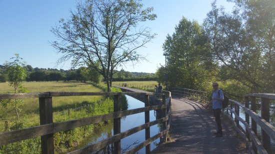 Harnham, UK: The pedestrian walk way to town or the train station