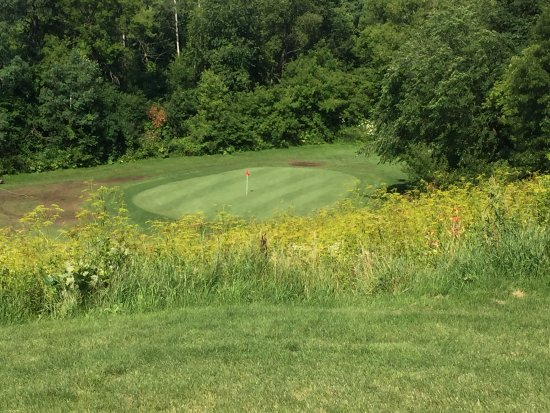 Preston, MN: Par 3 with green you can't see from tee because of tall grass