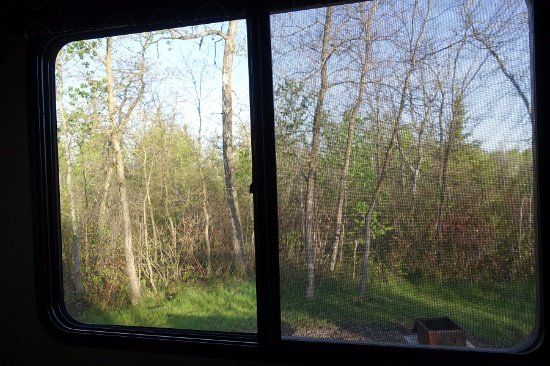 Manitoba, Canada: Lovely morning view from my RV bedroom window