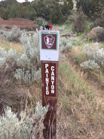 THEODORE ROOSEVELT NATIONAL PARK Painted Wooden Sign