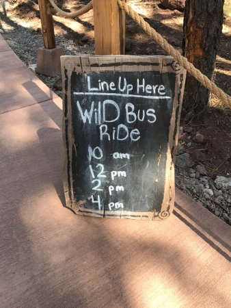 Williams, AZ: today they also ran one at 5 but that might be unusual