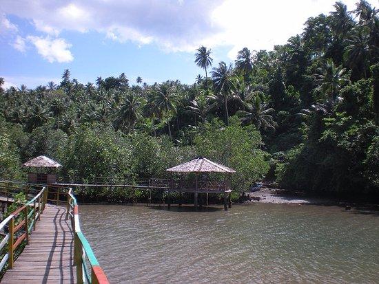 """Gubuk2 dan """"tracking"""" sepanjang 264 m di Ekowisata Pintukota - Pulau Lembeh"""