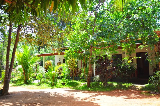 sigiri rock side home stay sigiriya sri lanka guesthouse rh tripadvisor co uk