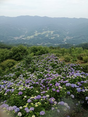 Minano-machi, Giappone: IMG_20170703_134300_large.jpg