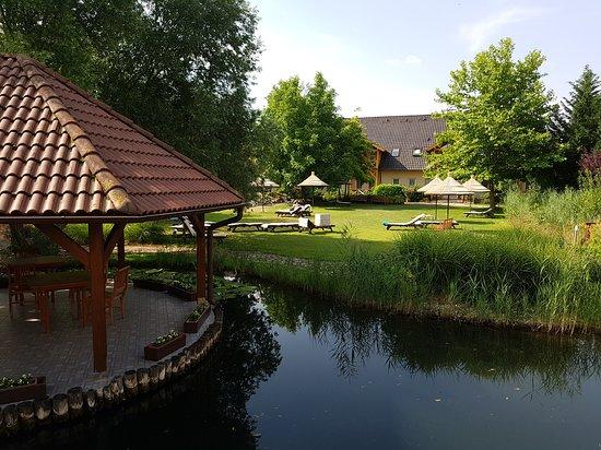 Hotel Orchidea Lipot : Perfektny oddych a telax!
