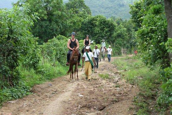 Inle Horse Club Nyaung Shwe