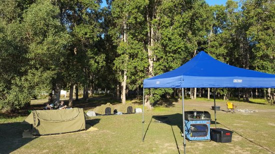 Cobb & Co Nine Mile Camping Grounds: A shady level camping spot and there are hundreds to choose from