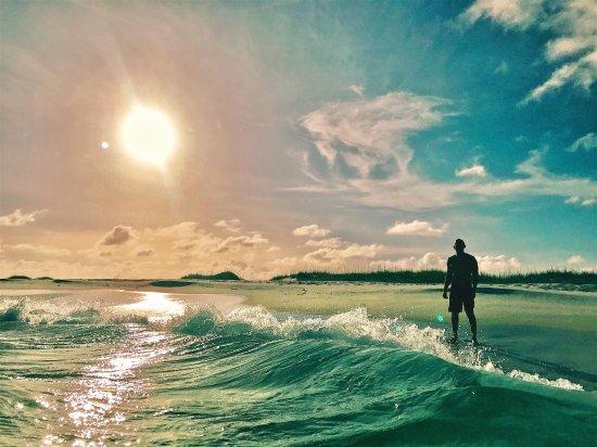 Santa Rosa Island: photo2.jpg