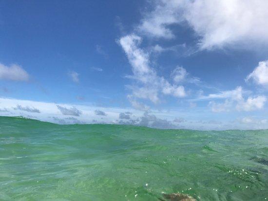 Santa Rosa Island: photo3.jpg