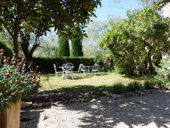 Jardin de curé - Espace petit déjeuner - Picture of La Cania ...