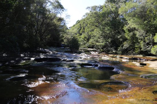 Somersby, Australia: Only a short drive from the M1 Motorway, West of the Gosford Exit. Such a pretty location. We ar