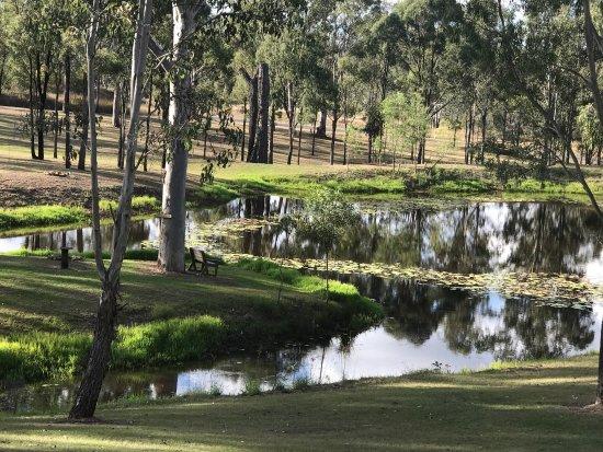 Murgon, Australia: photo2.jpg