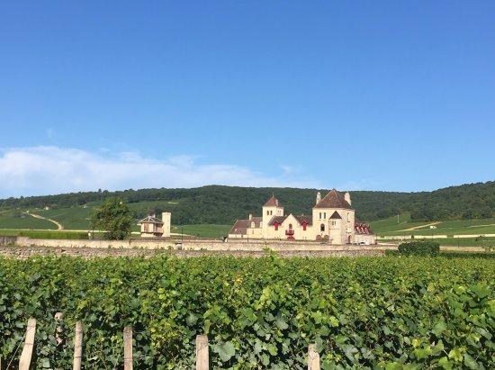 Chateau & Clos Vougeot