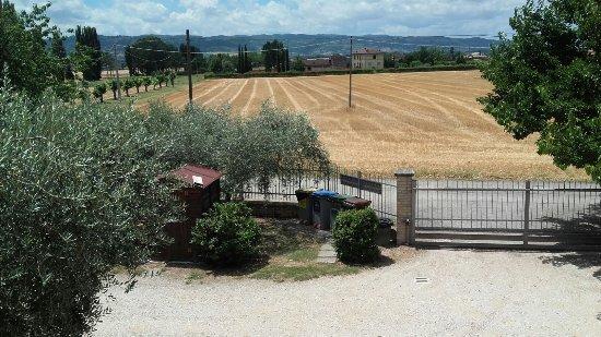Agriturismo La Mora : IMG-20170705-WA0002_large.jpg