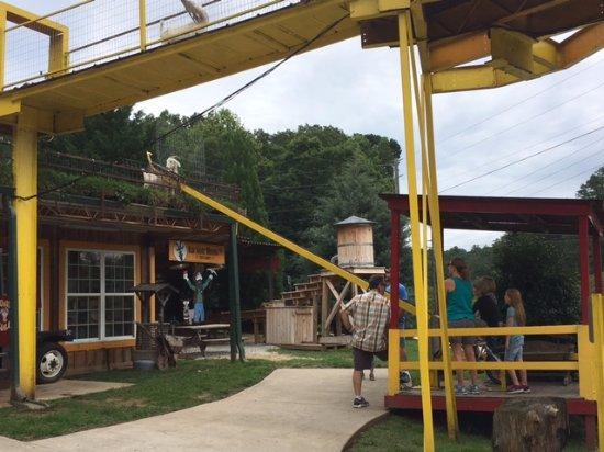 Tiger, GA: Feeding the Goats