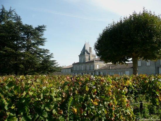 Libourne, Francia: Château du Tailhas