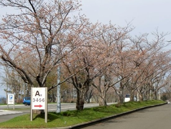Ishikari Foto