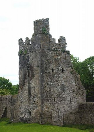 County Kilkenny, Ireland: Part of the ruins