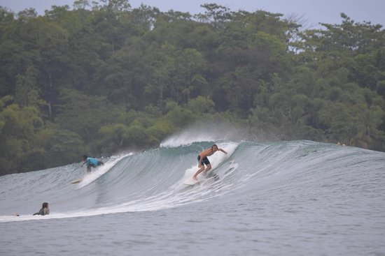 Surf Reports, Surf Forecast and Surfing Photos - Mono Loco
