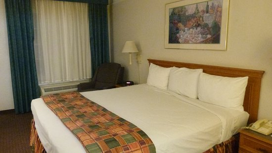 Ramada Limited Tucson West: chambre confortable