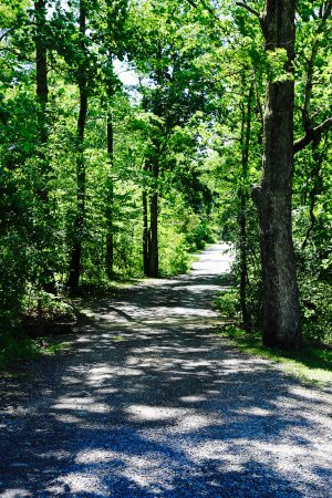 Columbia, Nueva Jersey: Trails