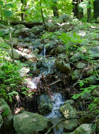Columbia, Nueva Jersey: Small waterfalls