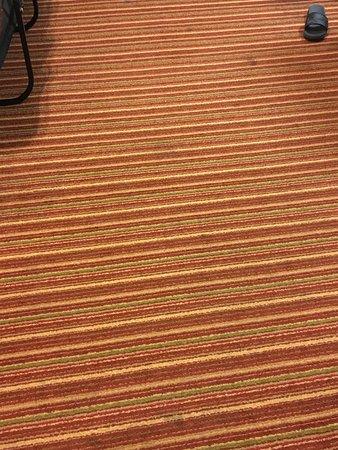 Residence Inn St. Louis Galleria : carpet needs to go