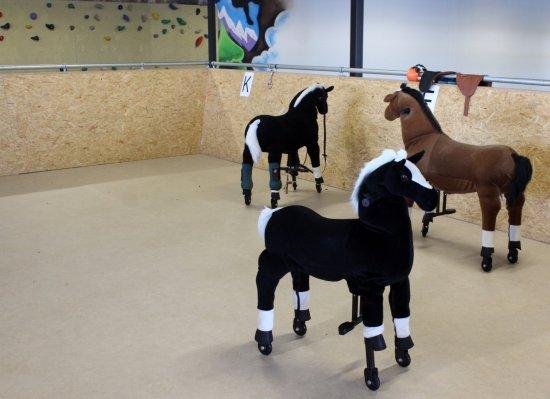 Ballorig Speelparadijs: horse riding arena