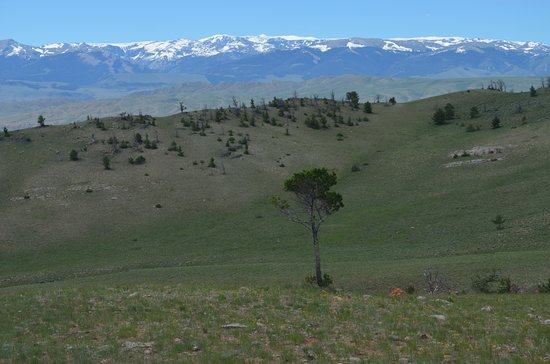 The Lazy L&B Ranch : Typical view from the ridge lines
