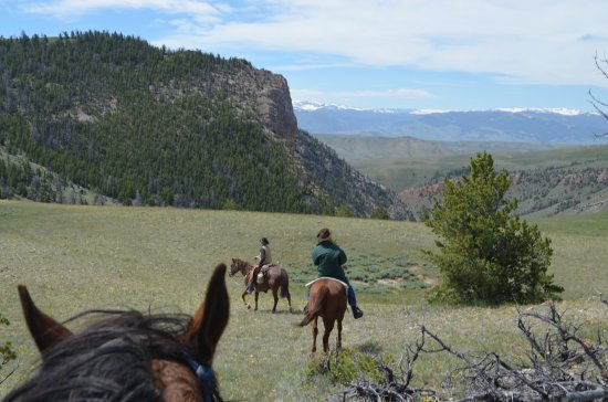 The Lazy L&B Ranch : View from a ride