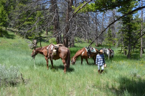 The Lazy L&B Ranch: Stopping for lunch
