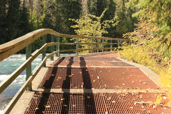 Meziadin Junction, Canadá: walkway going over the fishway